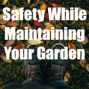 Ensuring Your Safety When Maintaining Your Garden