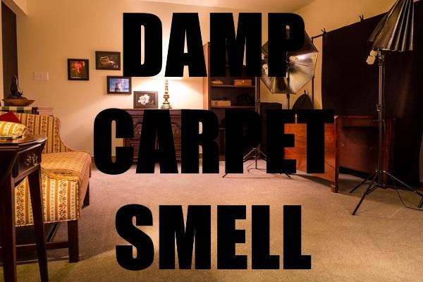 Damp Carpet Smell