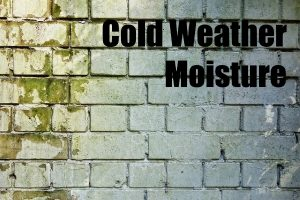 Cold-Weather Moisture: Gunk, Mildew And Dry Debris