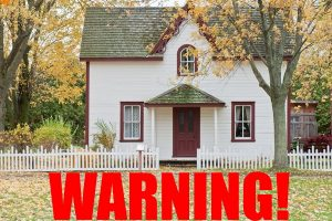 Pests Can Cause Havoc In Your Home