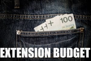 Extension Budget: A Stage By Stage Spending Strategy