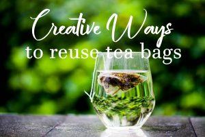 Creative Ways to Reuse Tea Bags