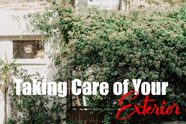 Taking Care Of Your Exterior