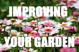 Improving Your Garden