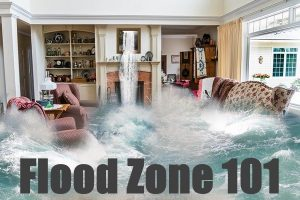 Flood Zone 101
