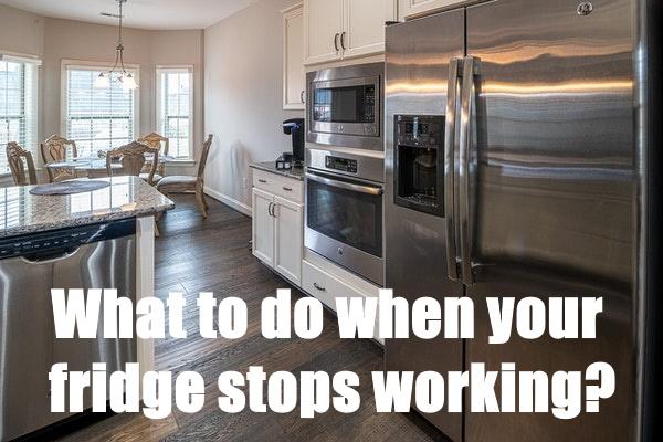 Fridge Stops Working