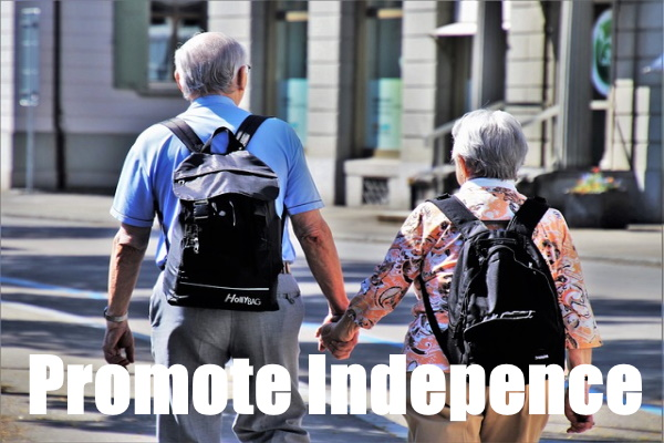Promote Independence In The Elderly