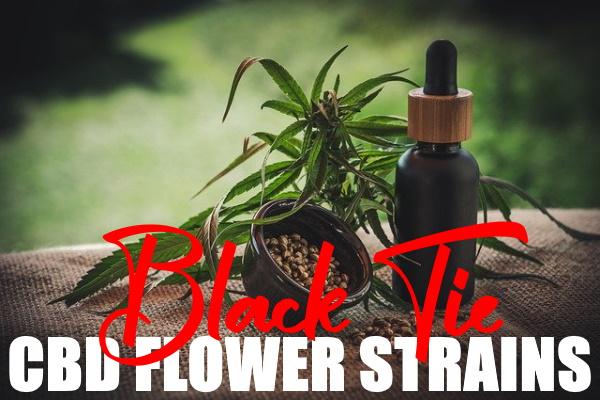 4 Awesome Black Tie CBD Flower Strains