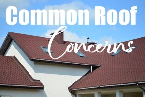 Common Roof Concerns