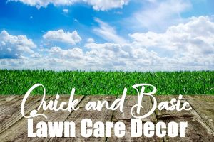 Basic Lawn Décor Ideas
