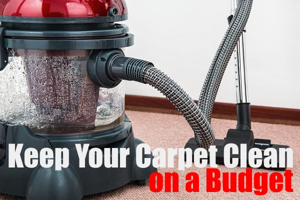 Carpet Clean On a Budget