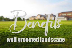 Benefits Of A Well-Groomed Landscape