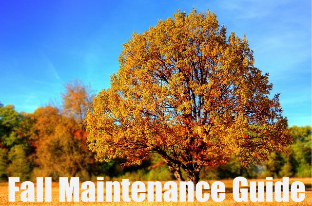 Landscape Maintenance Guide