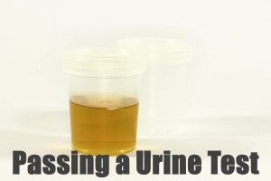 Passing a Urine Test