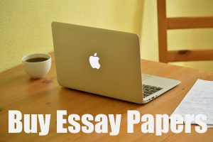 Buy Essay Papers
