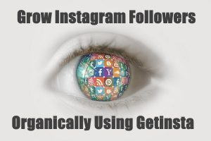 Instagram Followers Organically