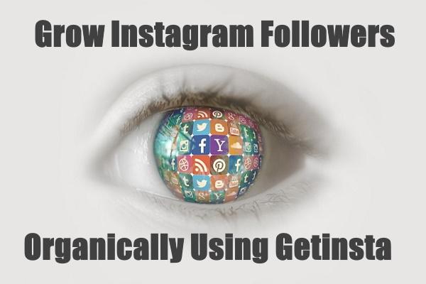 Instagram Followers Organically