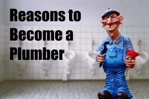 Reasons to Become a Plumber