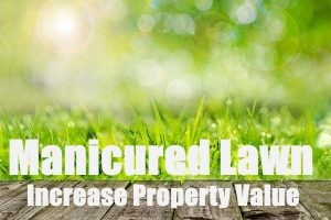 Manicured Lawn Increases Your Home Value