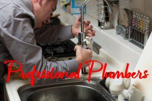 Professional Plumbers
