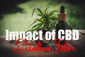 CBD On Sciatica Pain