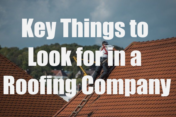Things to Look for in a Roofing Company